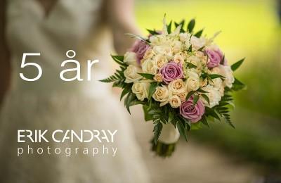 bröllopsfotografering i 5 år